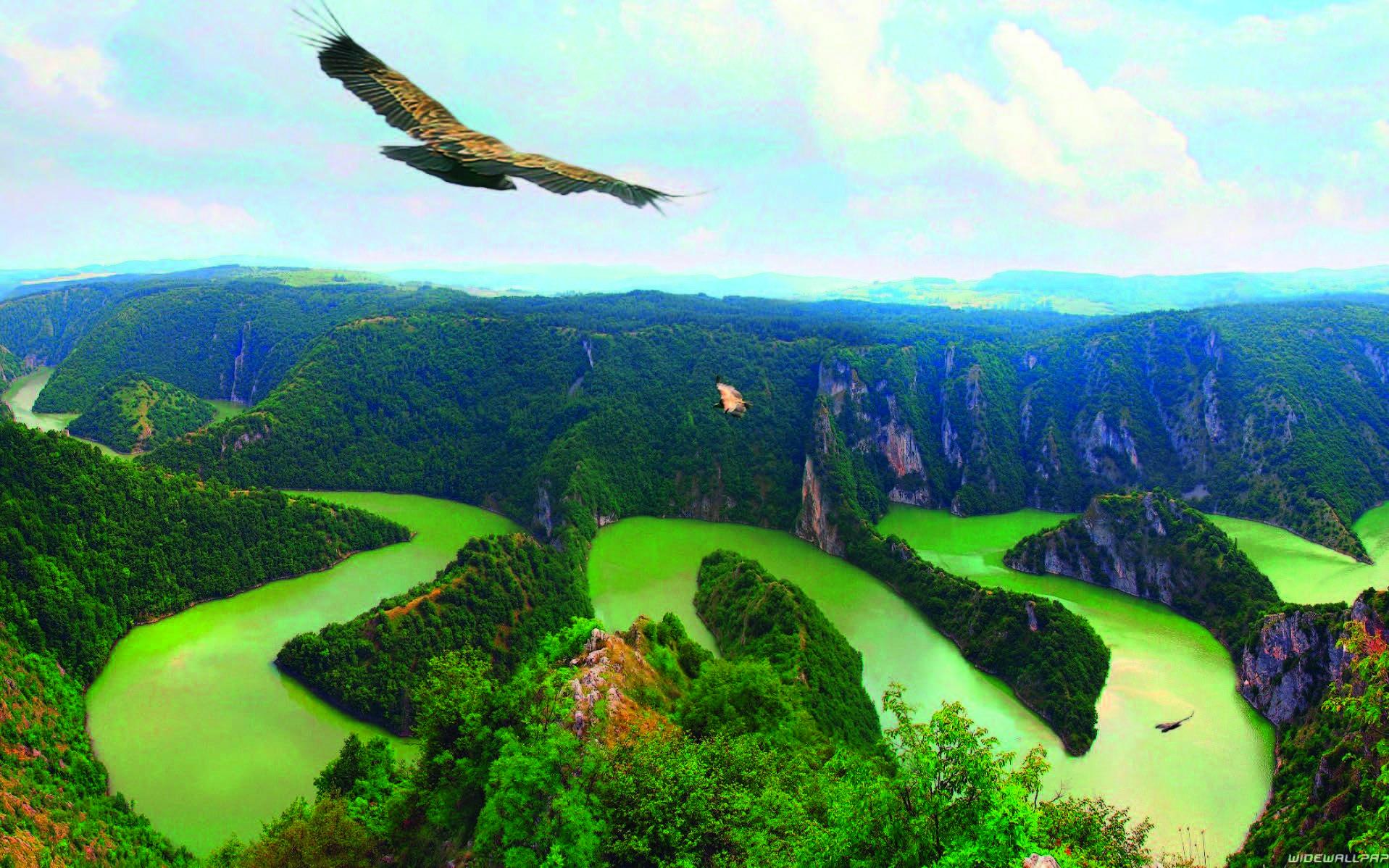 """La Serbie, """"le Tigre des Balkans"""" - par Eduardo Gurgel"""